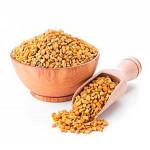 Семена хельбы